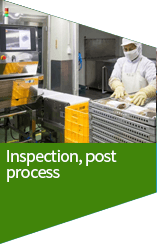 Inspection, post process